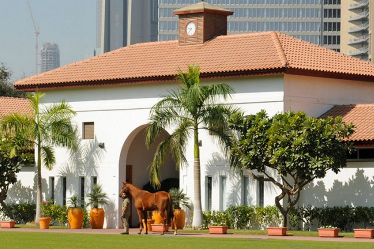 Zabeel Palace Stables